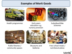 Financial Credit as a Merit Good